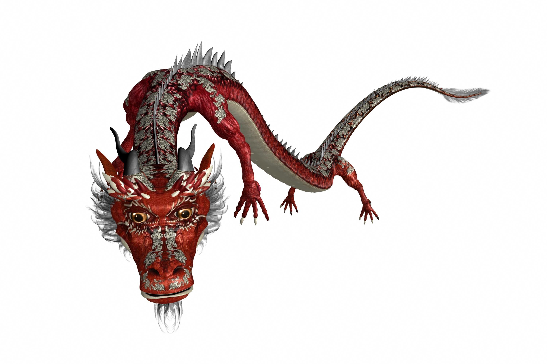 Image dragon chinois sur fond blanc - Photo de dragon chinois ...
